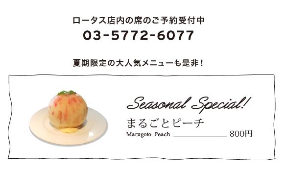 2016神宮外苑花火大会-web05.jpg
